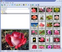 Able Image Browser Coupon Code