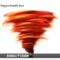 15% Off Bundlestorm Coupon