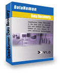 DataNumen Data Recovery Coupon Code – 20%