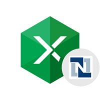 Instant 15% Excel Add-in for NetSuite Coupon Code