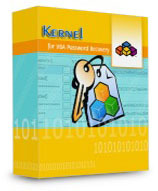 Kernel VBA Password Recovery – Corporate License Coupons