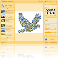 Magic Collage Coupon Sale