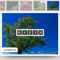 Visual Slideshow – Single Website Coupon