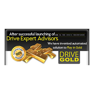 Drive Gold 1 License Coupon