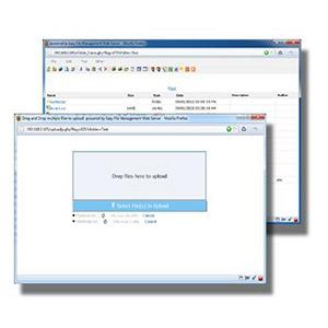 EFS Software – Web File Management